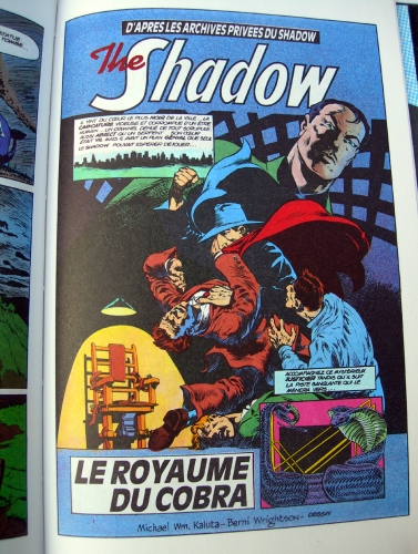 the shadow,le royaume du cobra,michael w. kaluta,dennis o'neil,berni wrighston,d.c,d.c comics,comics usa,1989