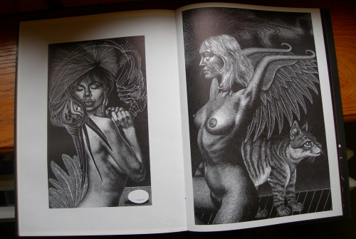 ruvanti,divina erotica,illustrations érotiques,pierre louÿs,lou reed,georges bataille,paul eluard,verlaine