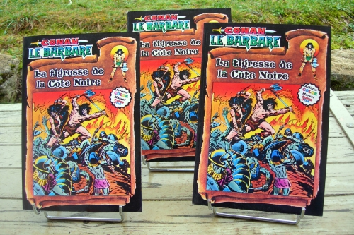 conan le barbare,conan,artima,aredit,b.d,bande dessinée,la tigresse de la côte noire,1980,roy thomas,john buscema,wallace wood
